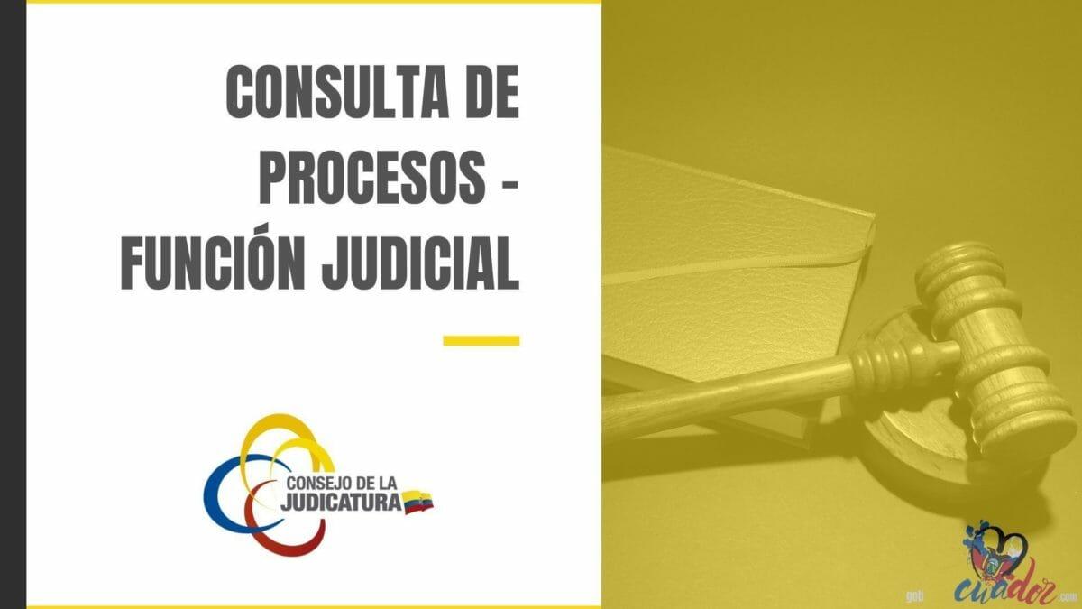 Consultas Procesos Funcion Judicial - Consejo de la Judicaturía