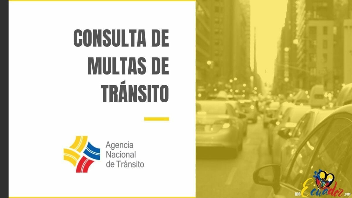 Consulta de multas de tránsito: Citaciones de la ANT