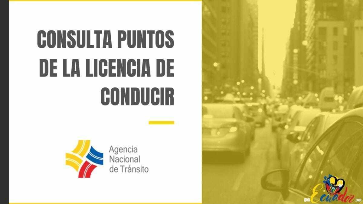 Cómo consultar puntos de la Licencia de Conducir