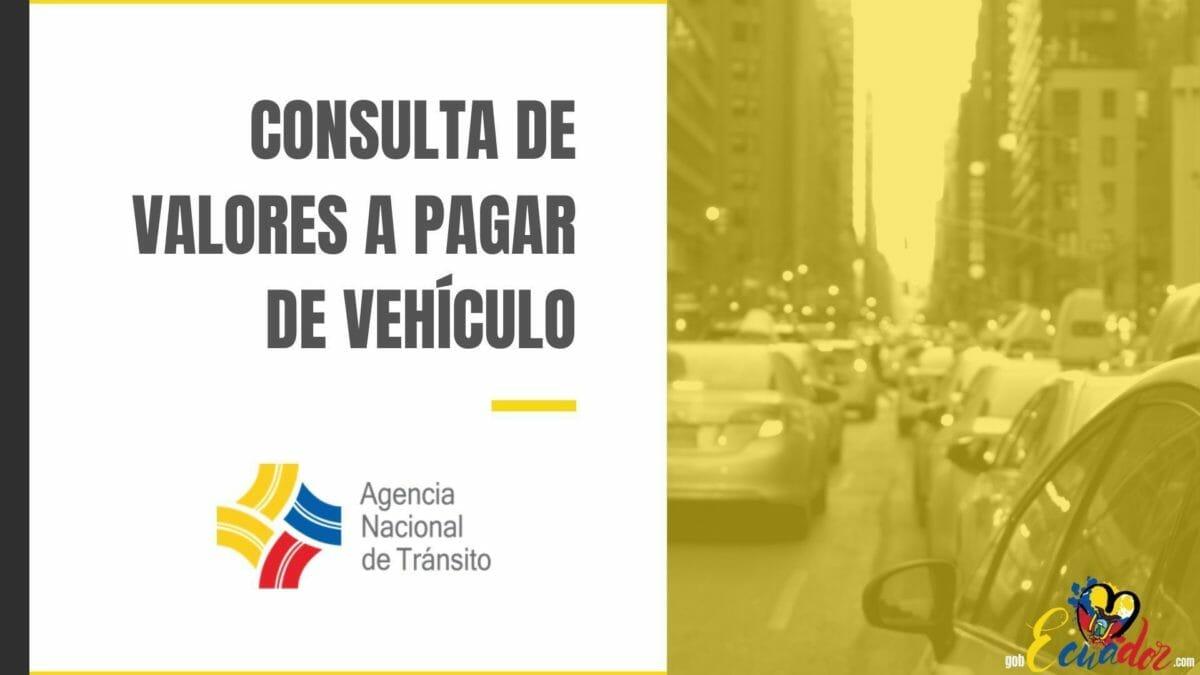 Consulta valores a pagar de vehículo
