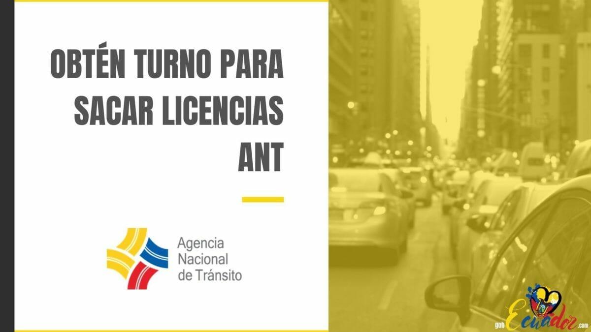 Obtener Turno ANT para sacar todo tipo de licencias