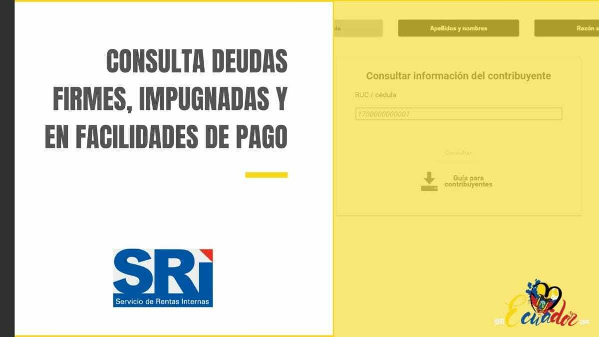 Consultar deudas SRI