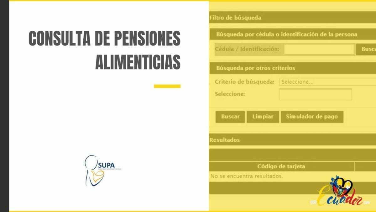 Cómo consultar las pensiones alimenticias SUPA